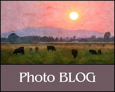 HP blog3