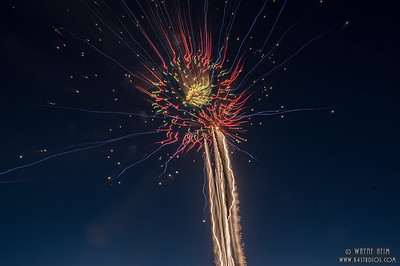 Fireworks Flower -- Photography by Wayne Heim