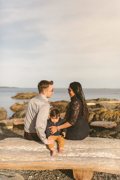 Baby Shower; Engagement Session; Mount Washington HCP Gardens; Chinese Village; Victoria BC Wedding Photographer-162.jpg