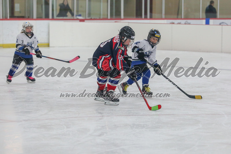 Blizzard Hockey 111719 7162.jpg