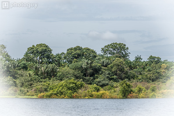 20140120_AMAZON_JUNGLE (1 of 72)