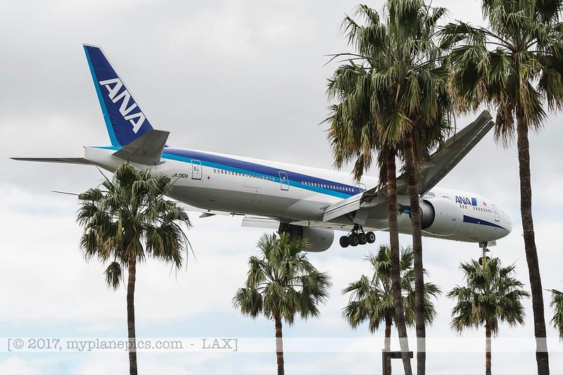 F20170219a110002_7993-avions cachés par palmiers-atterissage.jpg