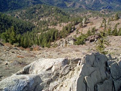5 mile road - Tronson Ridge Trail