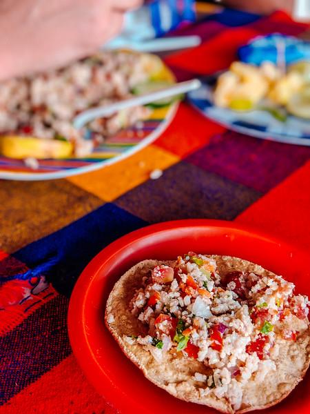 Colima style ceviche-12.jpg