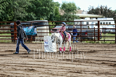 Estevan's Barrel Racing Extravaganza