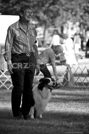 2010 Border Collie Specialty - Grass Valley