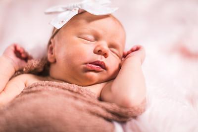Davidson Newborns