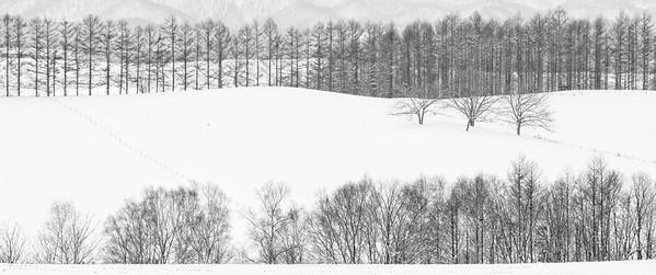Japan Hokkaido 2020