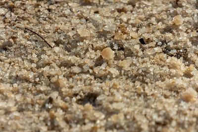 Dead Sea-Ein Gedi