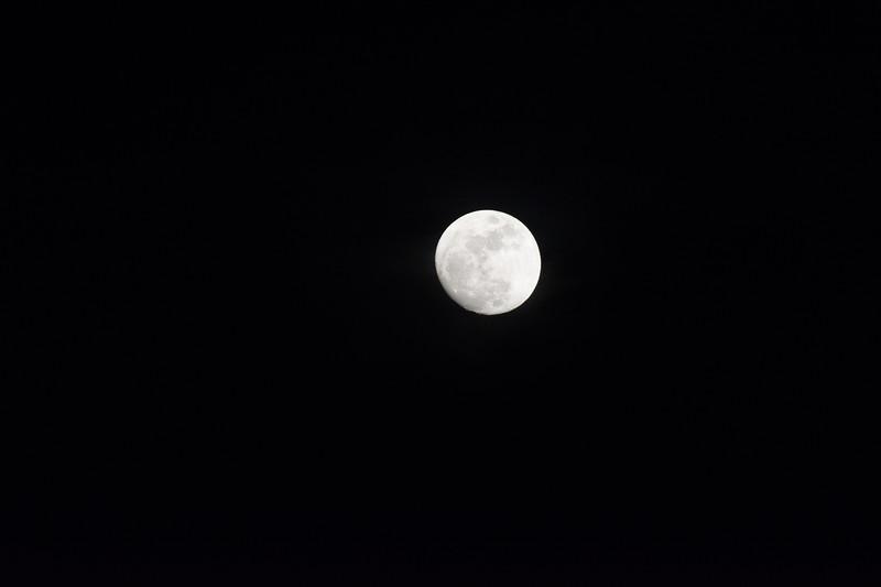 20170110 Moon (6 of 11).jpg