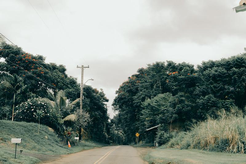 Hawaii20-365.jpg