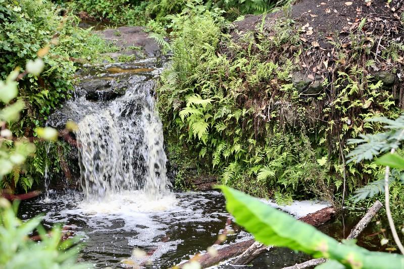 Waterfall 9.jpeg
