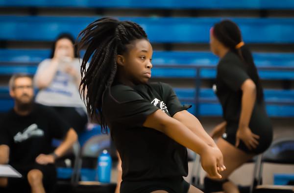 Volleyball, 2015, 08-07-15, NCHS, Denton, Varsity,-12