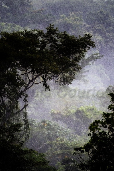 Honduras 0021_.jpg