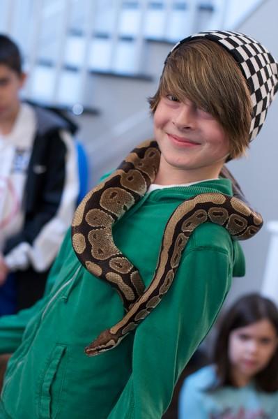 Liam's Reptile Party