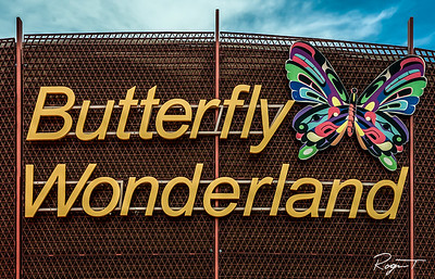 Arizona, Butterfly World