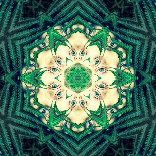image%3A61361_mirror8.jpg