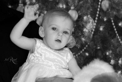 Jambor Christmas Photos