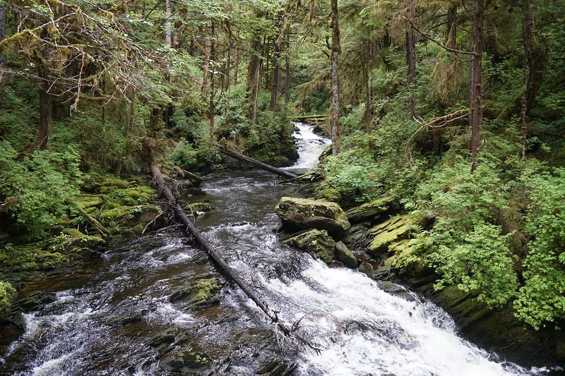 Montana Creek.JPG