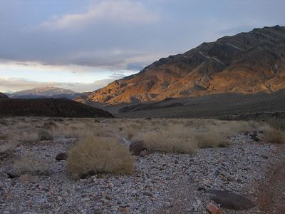 Death Valley Daze  2005