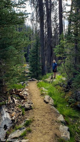 08-18-2020 Boundary Springs Hike-5.jpg