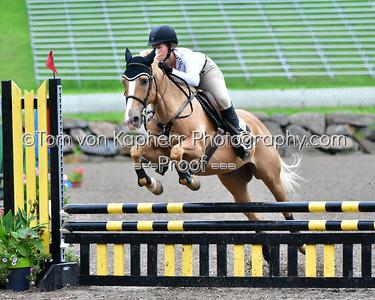 pony jumper