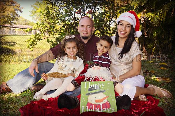 CHRISTMAS/NAVIDADES : DEC 2012