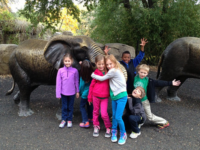 2nd Grade Trip to Zoo