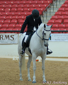 2011 Dressage at the Celebration - Spanish Horse Show
