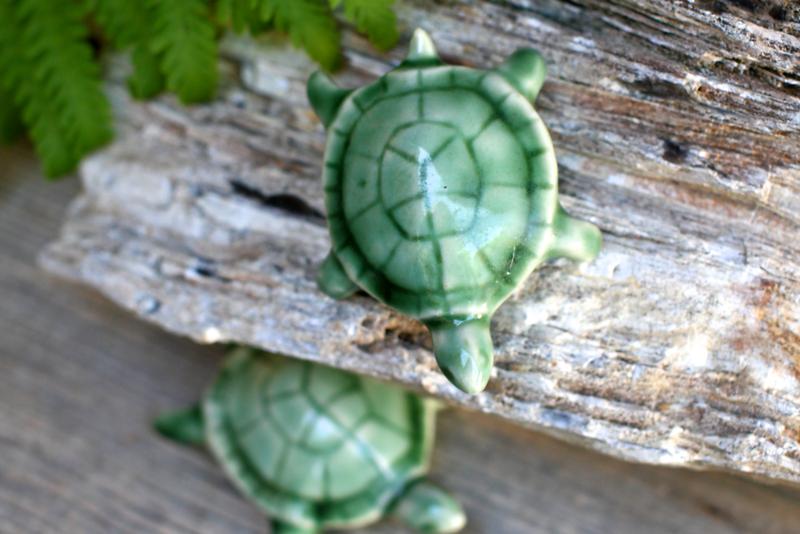 turtles  3639.png