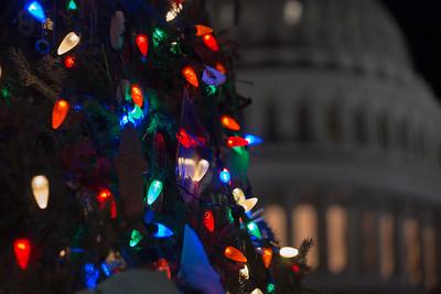 Capitol Christmas Tree Lighting Ceremony (2017)