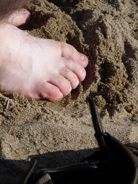 Calf Pasture Beach (17).JPG