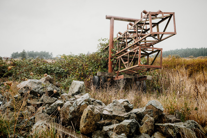 Old, discarded farm machinery, juts up to the sky while being ravaged by blackberry bushes. Seen on Lopez Island, Washington.