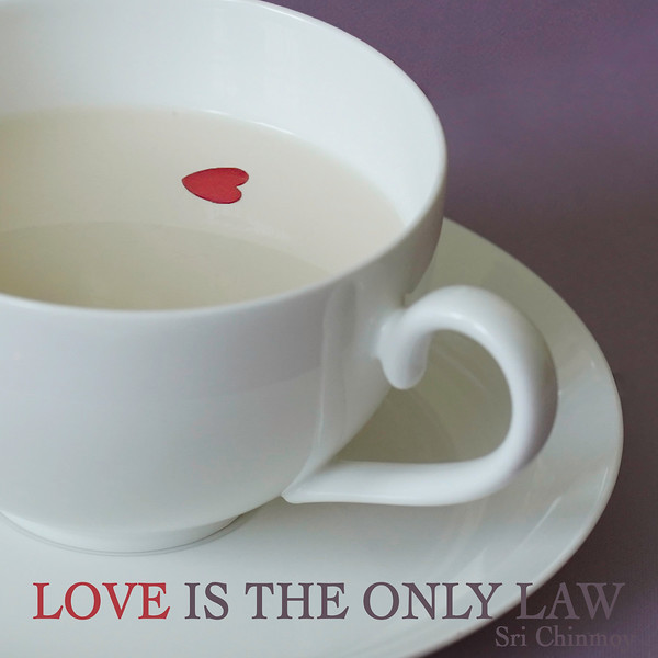 love is the only law.jpg