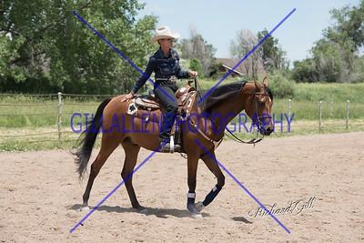 CoPtHA Western 160612