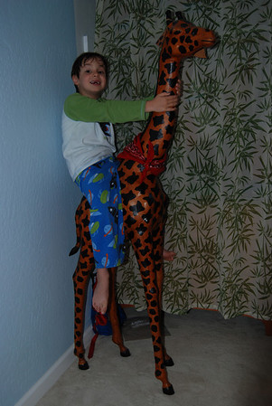 Giraffe after the Bath: 5/14/09