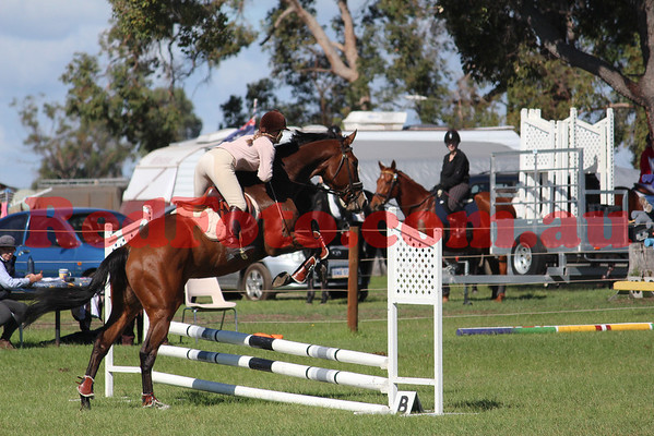 Capel ShowJumping Training Day April