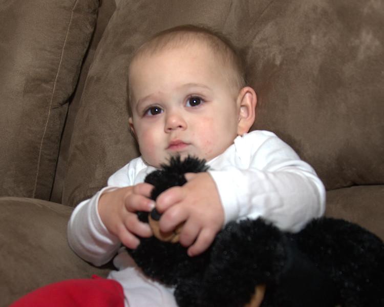 Luke bear 2.jpg