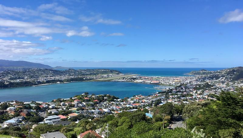 Evans Bay views
