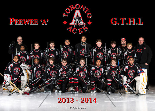2013-14 Aces Peewee 'A'