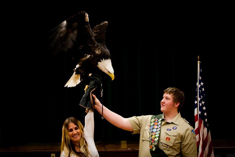 martin eagle-38.jpg