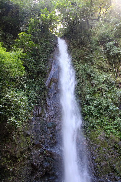 Tropical pristine waterfall in the forest in Costa Rica