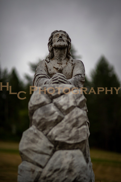 08/11/19 Shoshone Memorial Gardens