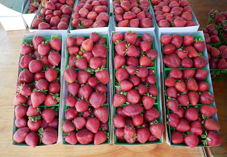 Santa Monica Farmer's Market Gaviota strawberries