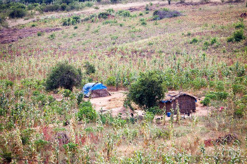 Uganda 17 (356 of 359).jpg