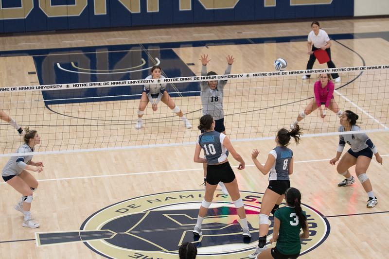 HPU Volleyball-93119.jpg