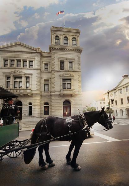 Charleston horse.jpg