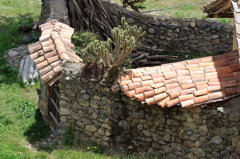 Andean Dwelling Stone Wall