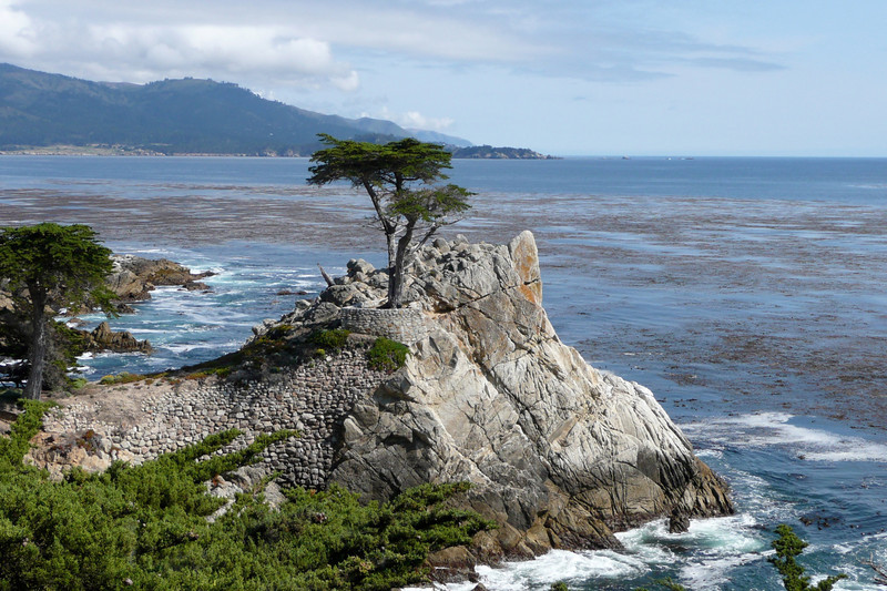 The Lone Cypress. 17-Mile Drive, Monterey