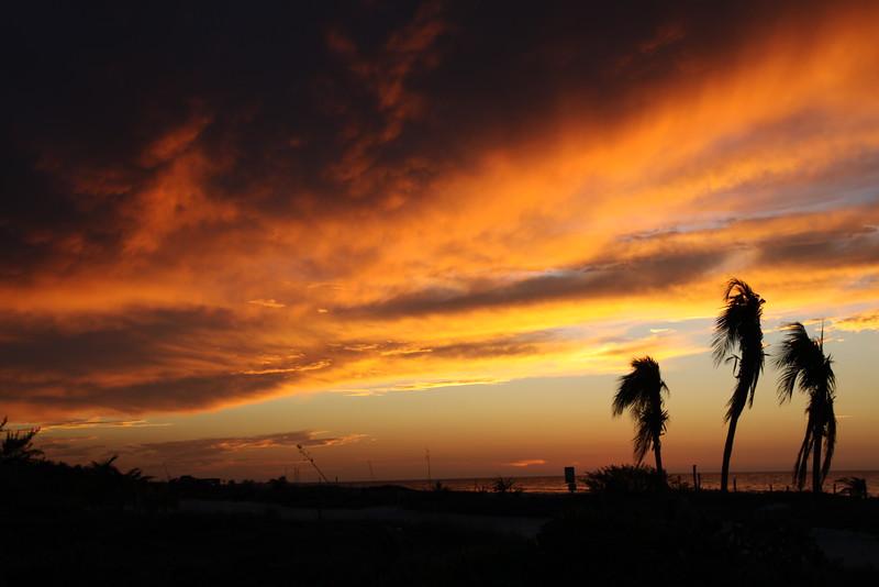 Holbox Island, Mexico  Feb2016 127.JPG